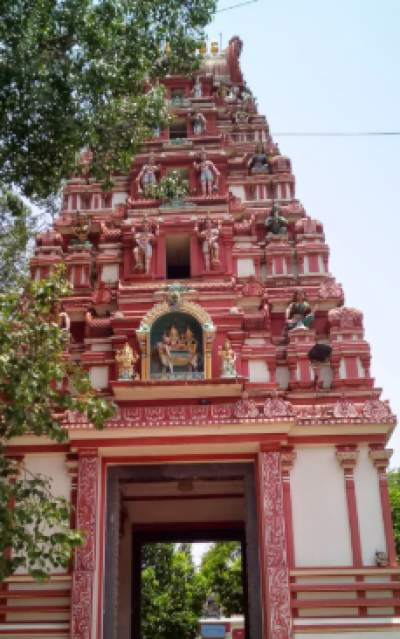 Kadu Malleshwara Temple Timings