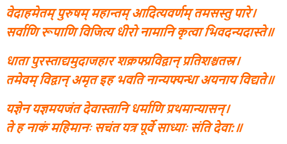 Purusha Suktam In Hindi