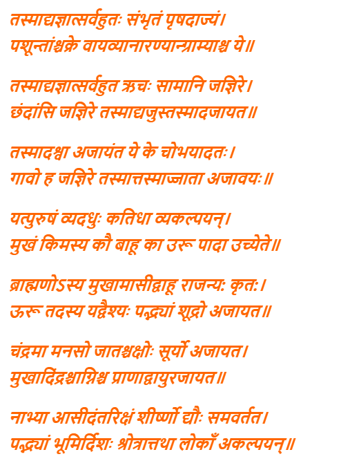 Purusha Suktam Lyrics In Hindi